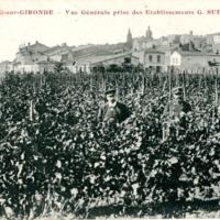 http://telechargement.bourg-en-gironde.fr/docs/pml_c1892.jpg