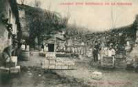 http://telechargement.bourg-en-gironde.fr/docs/pml_c1044.jpg